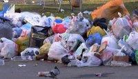 Из-за жалобы одного жителя в мусоре утопает весь двор